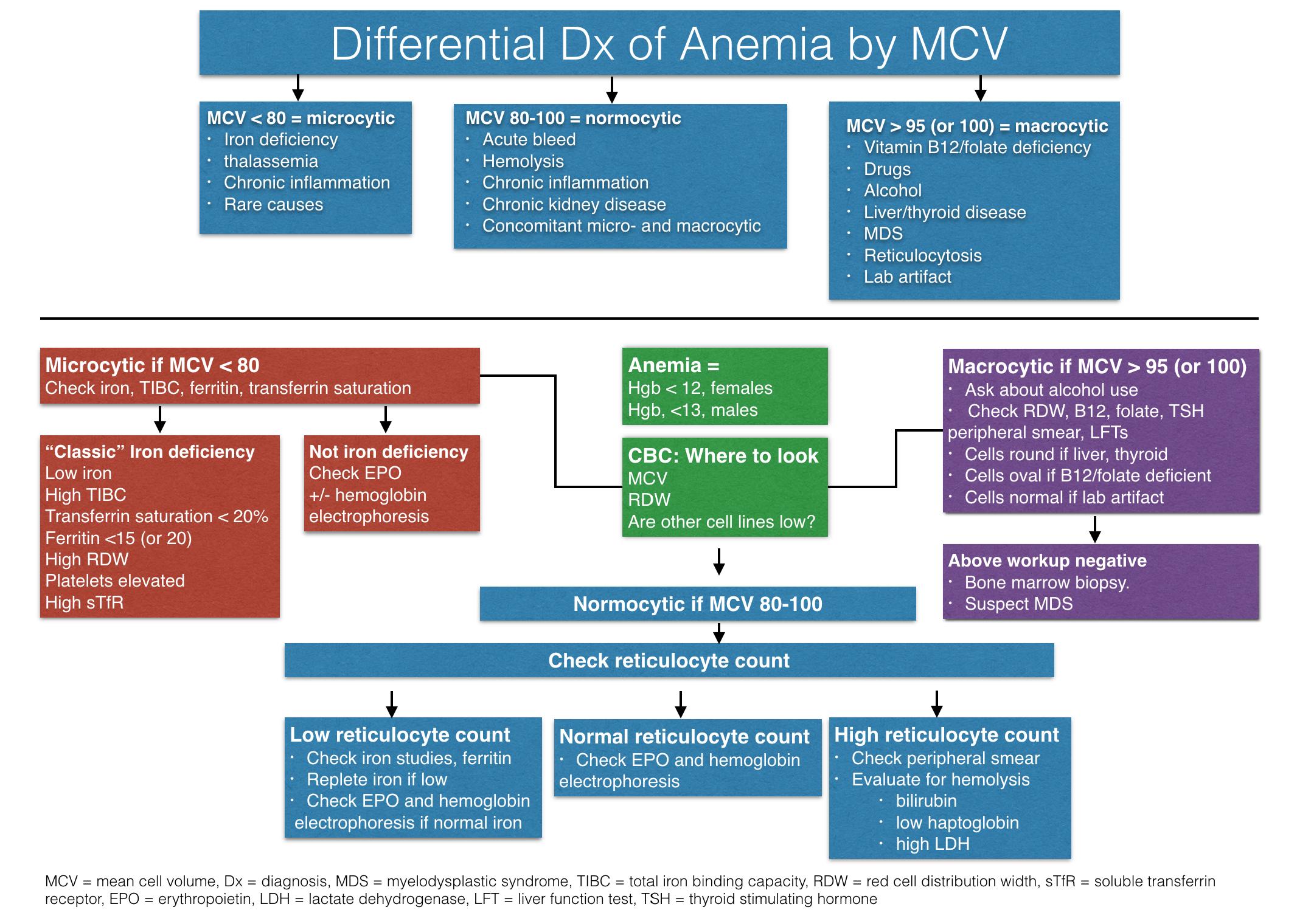 Anemia Algorithm (Click to view)