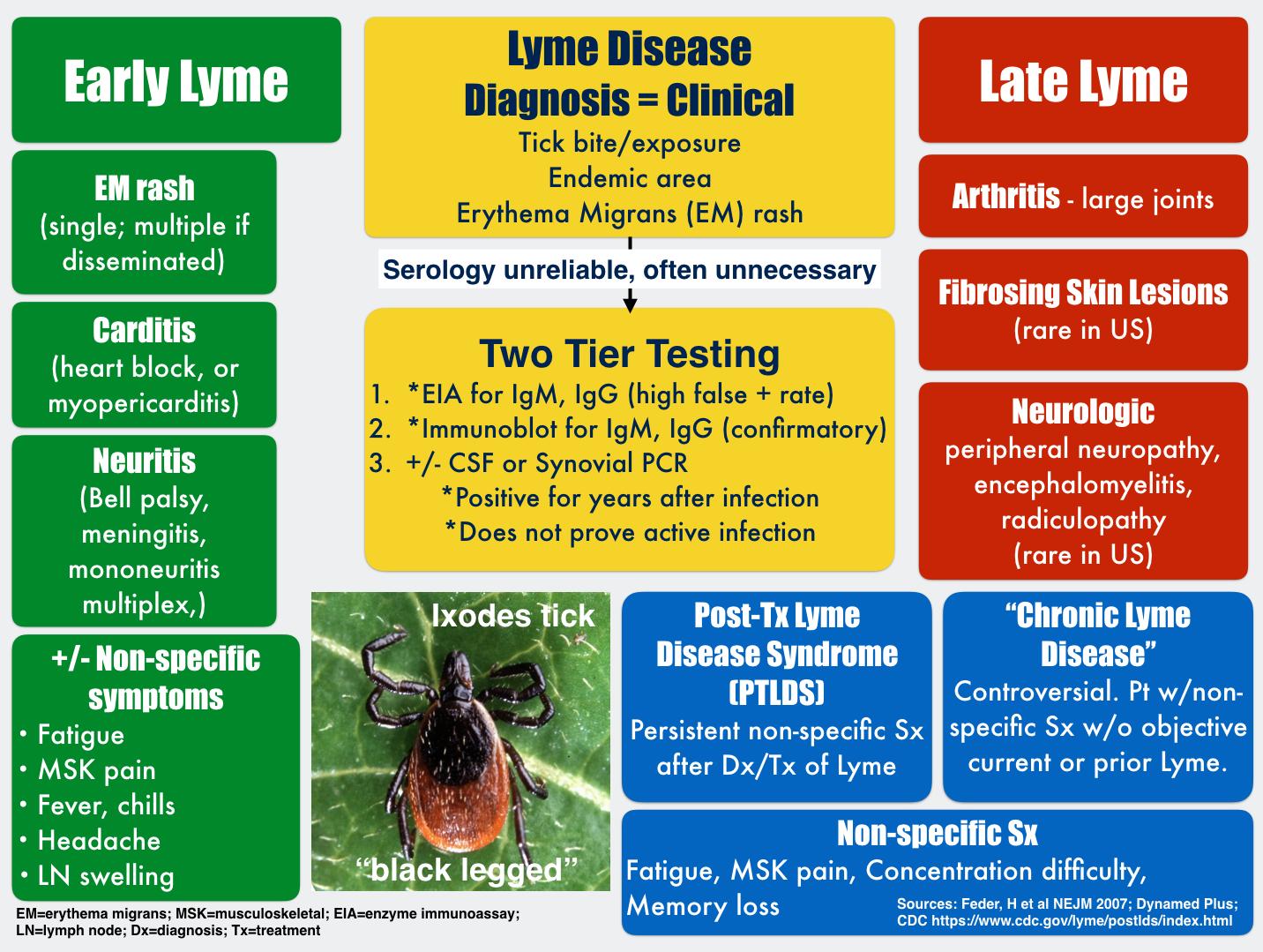 doxycycline for lyme