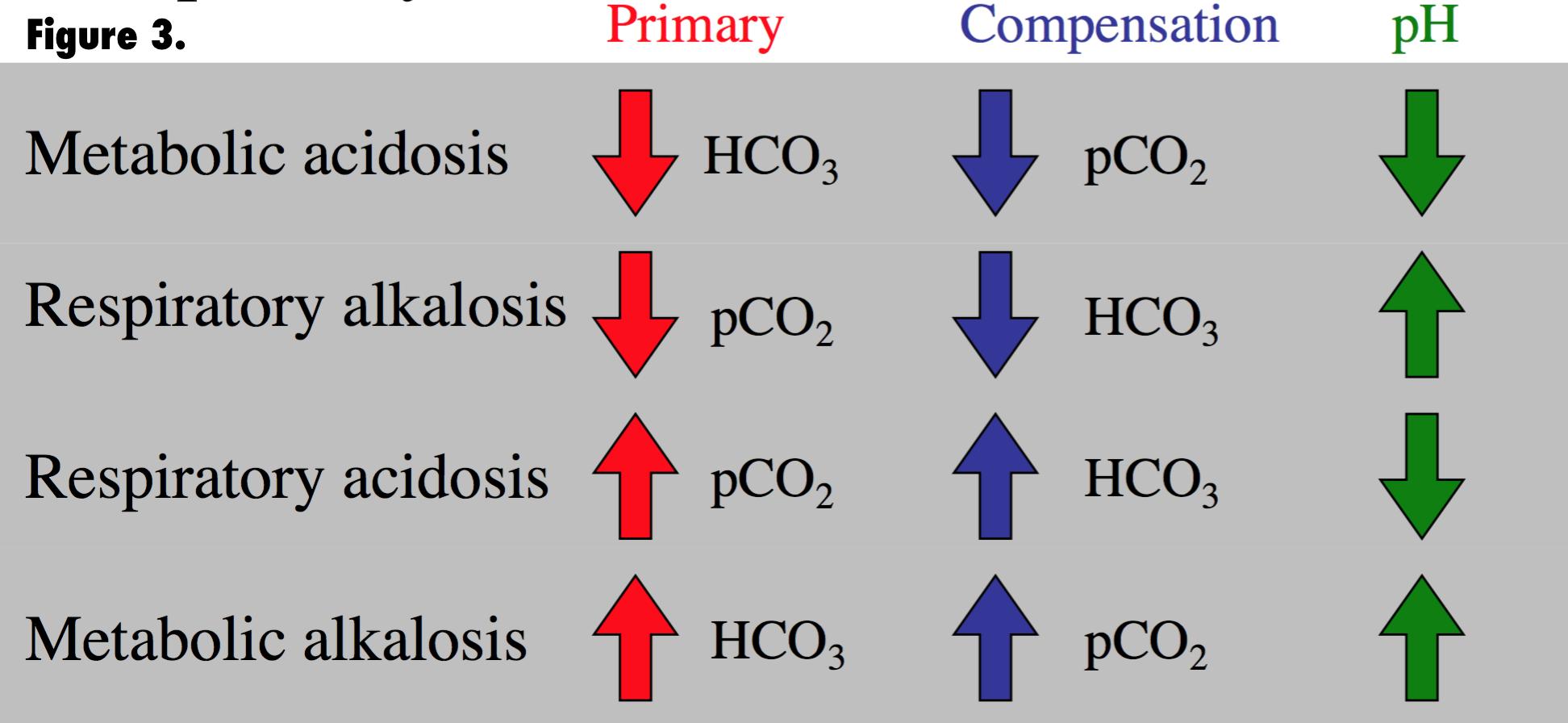 Primary Respiratory